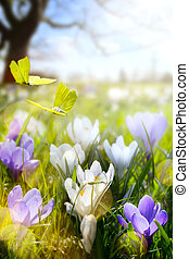 Spring flower and fly butterfly