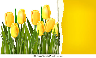 Spring flower background with ripped paper Vector ...