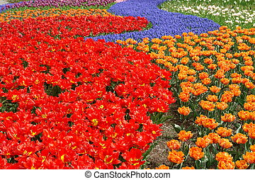 Spring flower bed