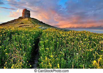 spring flower field with trail to castle tower vivid colors bright yellow pasture colorful spring meadow