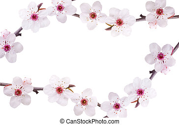 spring flower frame - frame spring background of pink fruit-...
