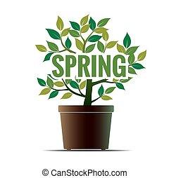 spring., flower., illustratie, vector, groene, potted