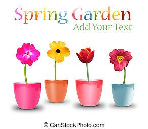 Spring Flower Pots on White