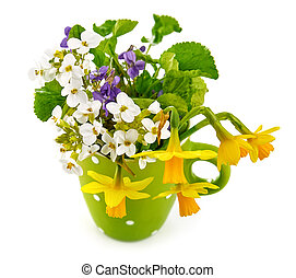 Spring flower violet and lent lily in green cup gardening...
