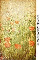 Spring flowering tulips. Photo in vintage image style.