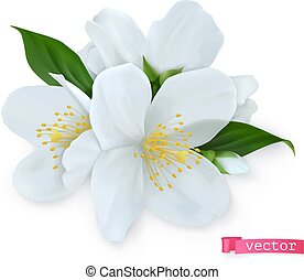 Spring flowers. 3d realistic vector icon