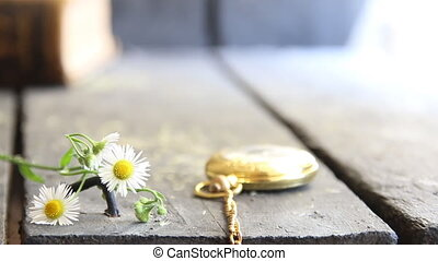 spring flowers and pocket watch - flower background
