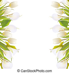Spring flowers backround with text lettering. illustration.