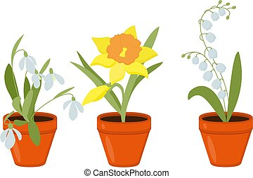 Spring flowers growing in the pods. Vector Illustration.