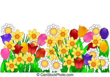 Spring Flowers with Tulips Daffodils Daisies Illustration Isolated on White Background