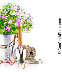 spring flowers in a bucket with garden tools
