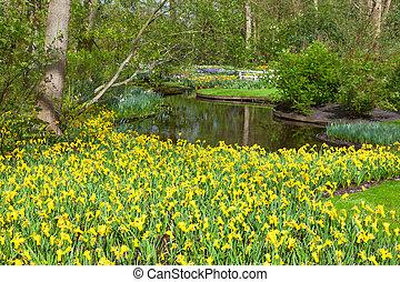 Spring Flowers in dutch Spring Garden Keukenhof, Lisse, Netherlands.
