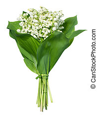 Spring flowers: lily-of-the-valley