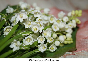 Spring flowers - Lily-of-the-valley