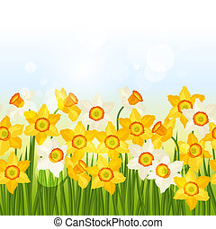Spring flowers narcissus seamless pattern horizontal border.