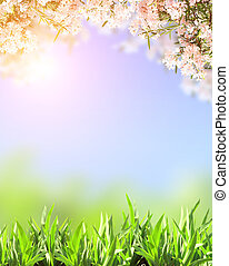 Spring flowers of pink color and green grass