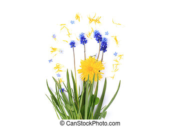spring flowers on a white background vintage