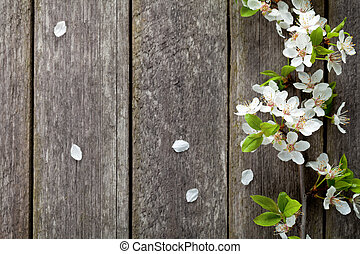 Spring Flowers - Spring flowers on wooden table background....