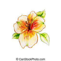 Spring flowers Watercolor painting.