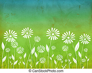 spring flowers white daisy