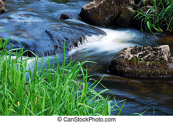 spring flowing brook, detail flowing water between stones and grass