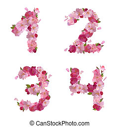 Spring font from cherry flowers figures 1,2,3,4