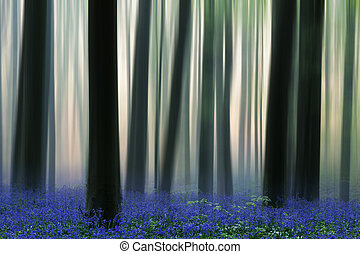 spring forest covered with bluebell wildflowers