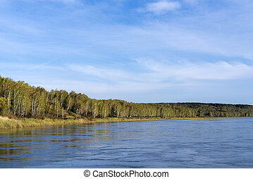 Spring forest on the shore of a deep river