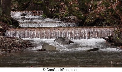 Spring forest stream mountain river running cascades over mossy rocks
