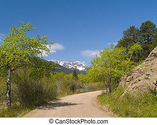 Spring Framing Mountain Road