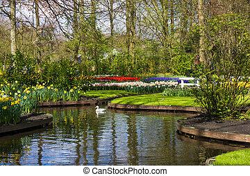 spring garden. Keukenhof garden