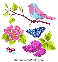 Spring garden set of objects. Natural illustration with blossom flower, robin birdie and butterfly