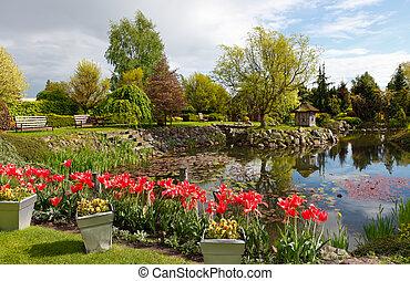 Spring garden with a pond