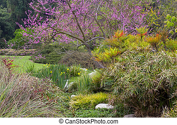 Spring Garden with Blooming Cherry Tree.