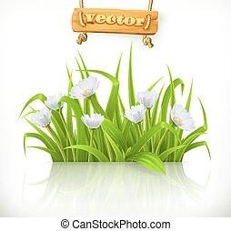 Spring grass, 3d vector icon