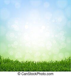 Spring Grass Border