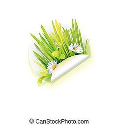Spring grass bouquet