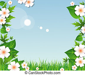 Spring grass, leaves and flowers
