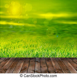 Spring grass - Background and texture of Beautiful green...