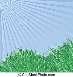 Spring grass under blue sky,  vector background