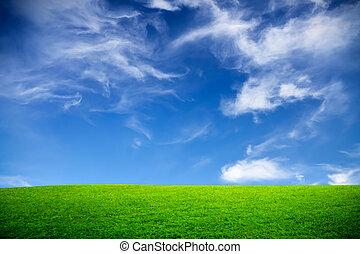 Spring, green field