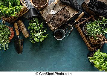 Spring hobby garden works concept on blue background