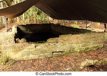 Spring House Ruins, Bulow Plantation Ruins Historic State Park, Florida