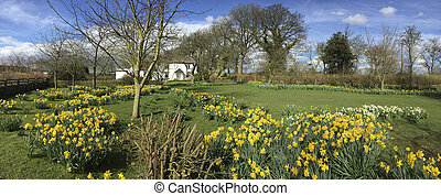 Spring in an English country garden