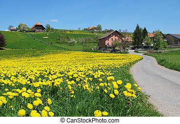 Spring in Emmental, Switzerland
