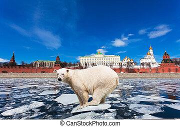 Spring in Moscow. The polar bear on an ice floe floats by the Kremlin
