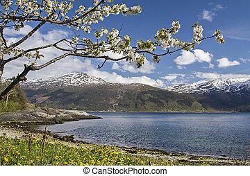 Spring in Norway