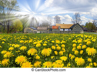 Spring in Pyrohiv