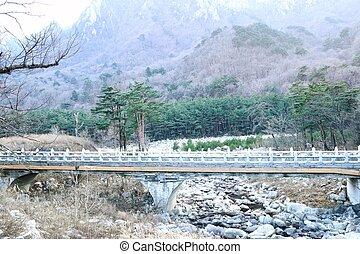 Spring in South Korea