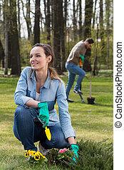 Spring in the garden- garden work